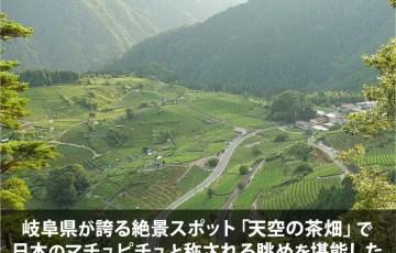 岐阜県が誇る絶景スポット「天空の茶畑」で日本のマチュピチュと称される眺めを堪能