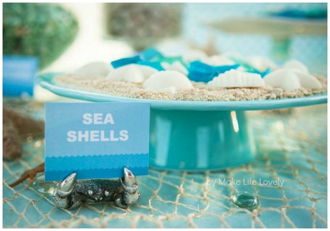 Plate of chocolate sea shells