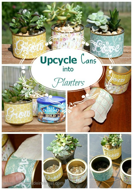 Upcycle Cans into Planters