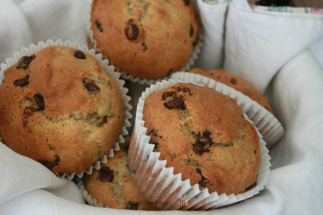 Are you a food lover?  How about a muffin lover?  This collection of simple muffin recipes will leave you drooling. Whether it be fruity, chocolaty or healthy, you will find a muffin recipe which you are going to love.  Plus, you will be surprised because.....some of them are even healthy for you.  Surely that is just the icing on the cake!