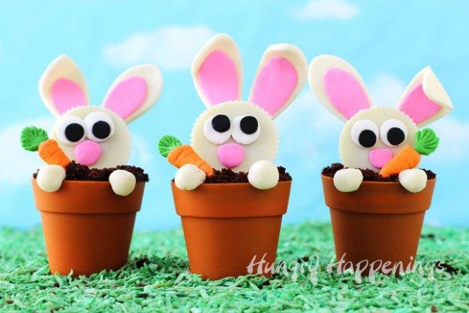 easter-bunny-cupcakes-terra-cotta-pot-baking-cups