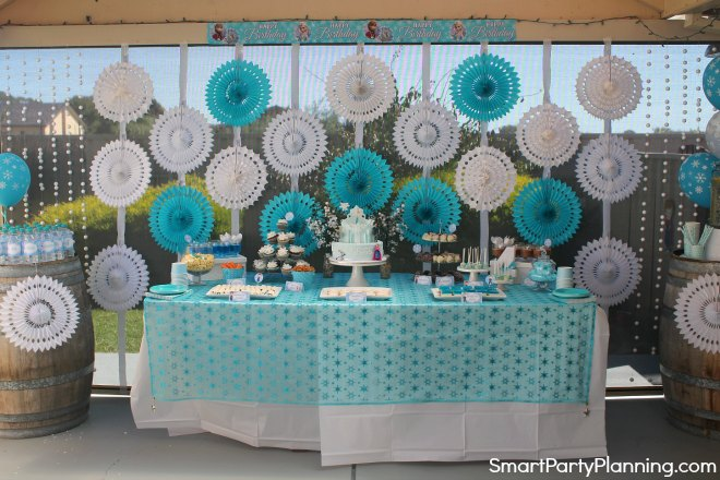 Frozen Birthday Party Backdrop