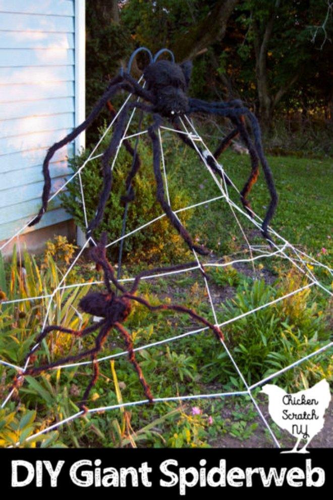 spiderweb-clothesline-