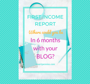 Where will you be in 6 months time with your blog?: Income report.