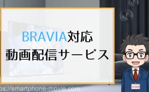 BRAVIA対応 動画配信サービス