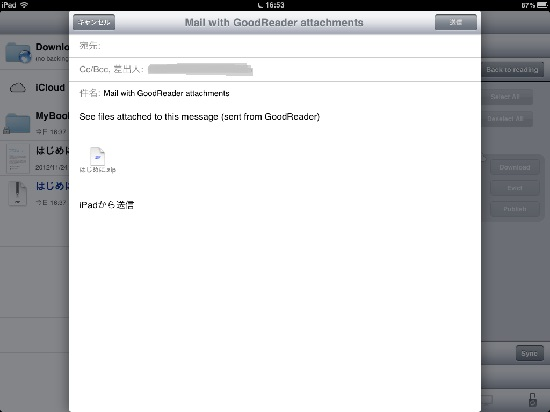 iPad mini zip mail05