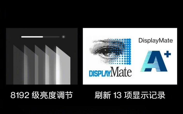 OnePlus 9 Pro Displaymate