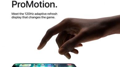 Apple iPhone 13 Pro ProMotion-Display