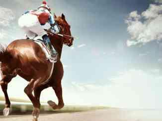 Cudworth's racing lays service