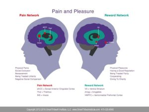 Emotional Intelligence (EQ) - Pain and Pleasure