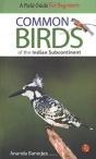 common-birds-of-the-indian-sub-continenet