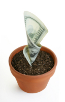 Sowing The Seeds For Marketing Success
