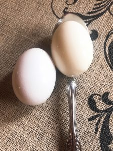 perfect boiled egg