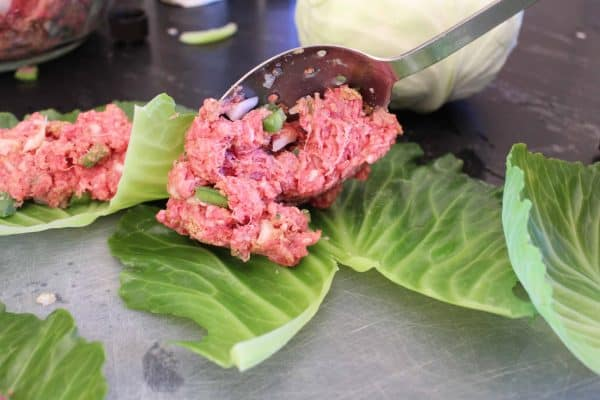 Large spoon with beef filling for stuffed cabbage rolls