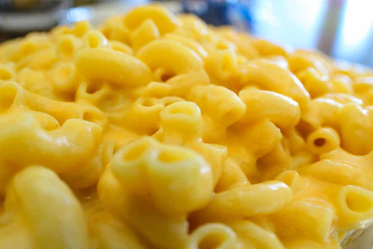 Close up of creamy macaroni and cheese