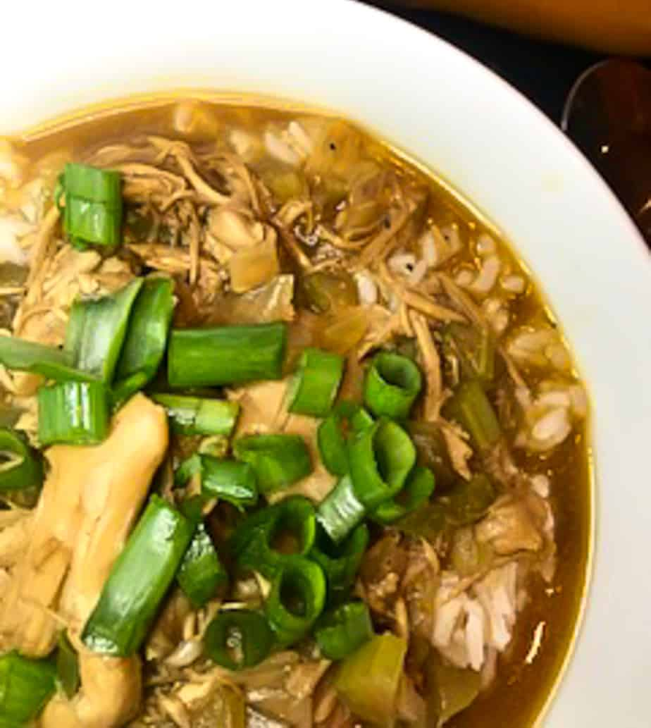 Chicken stew in white bowl topped with green onions
