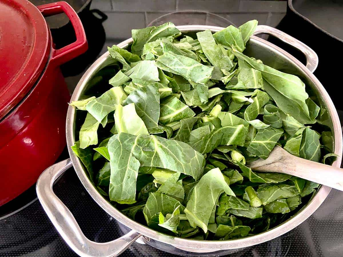 One pound of raw chopped collards in a stockpot.