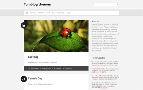 tumblr style wordpress themes 16 18 Free Awesome Tumblr Style WordPress Themes