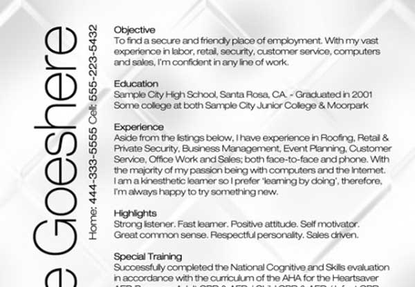 best resume format 2012