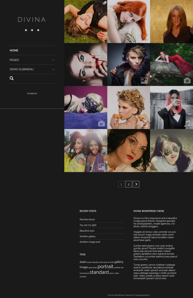 divina-wordpress-theme-06