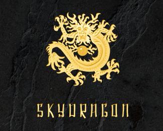 dragon logo 07