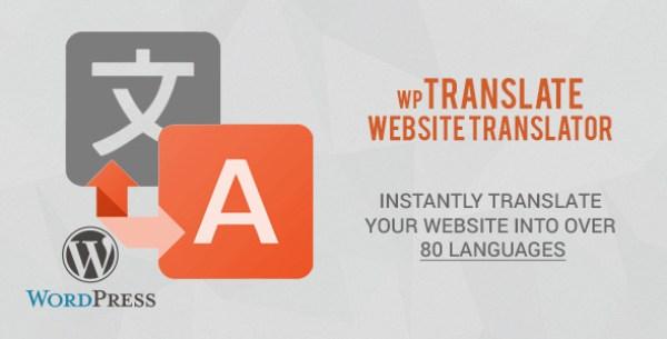 translation-wordpress-plugin-12