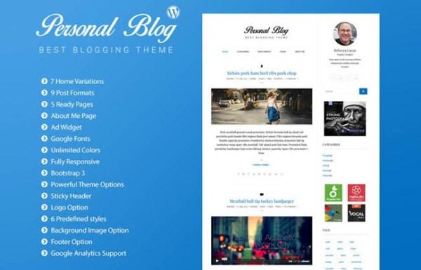 personal-wordpress-theme-14