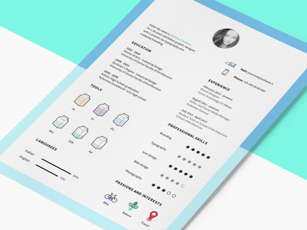 25 Free Indesign Resume Template For Job Seeker