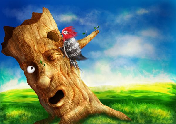 Create a Colorful Woodpecker and Tree Scenery 35 Fresh and Useful  Photoshop Tutorials