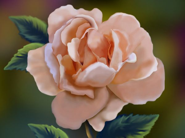 Digital Painting Of A Rose From Scratch 35 Fresh and Useful  Photoshop Tutorials