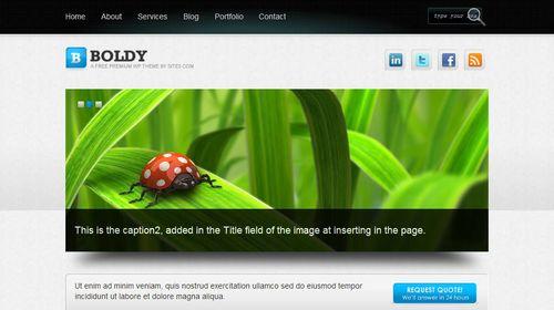 boldy wordpress Top 20 Most Useful WordPress 3.0 Ready Themes