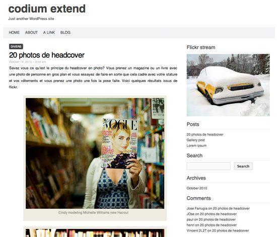 codium-extend-wordpress-theme