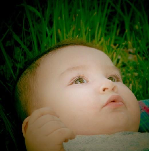 baby photos (22)