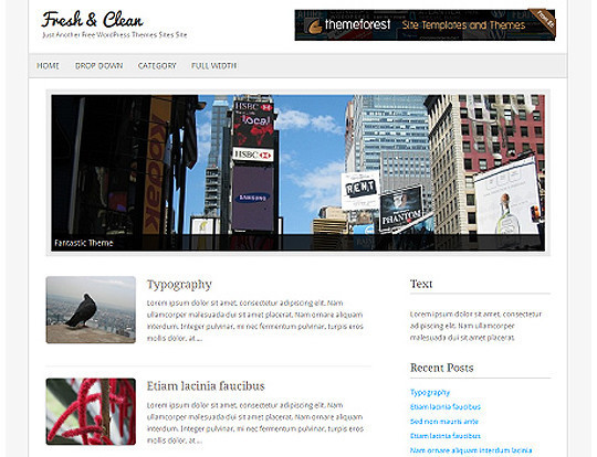 HTML5 Minimal WordPress Tema