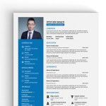 A4 Professional Resume
