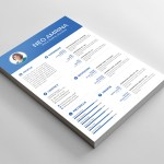 Amrina Resume Template
