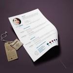 Clean Minimalist CV