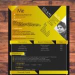 Modern Designer Resume