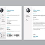 Simple Professional Resume