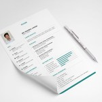 Clean Neat Resume