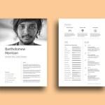 Free Designer Resume