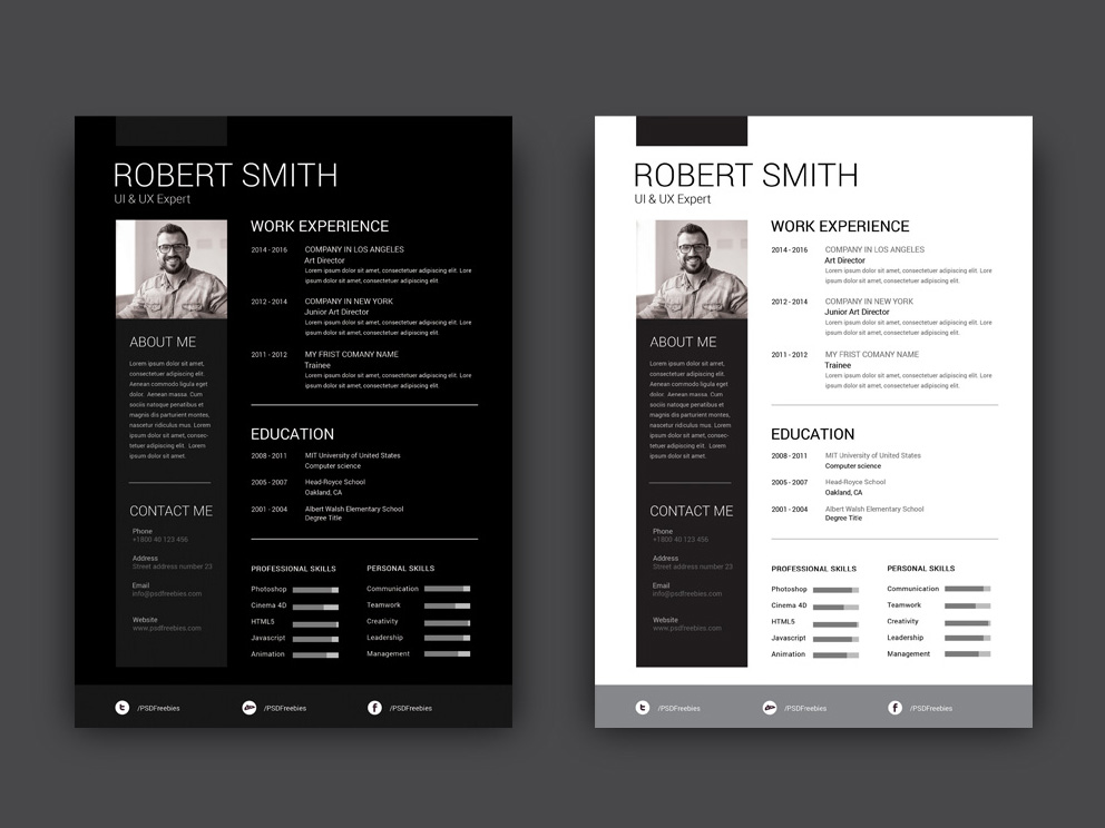 Free Resume Template with Dark and Light Color Scheme
