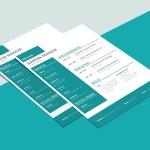 Modern Designer CV