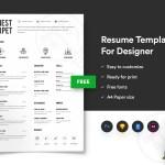 Portfolio Infographic Resume
