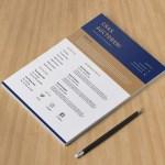 Flat Elegant CV