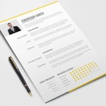 Clean Trendy Resume