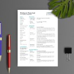Editable Indesign Resume