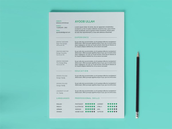 Free Any Industry Resume Template