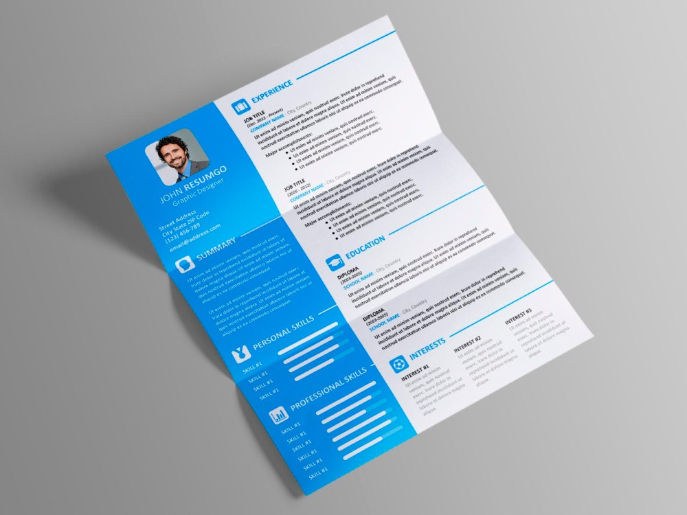 Vasilis - Free Modern Resume Template with 2-Column Layout
