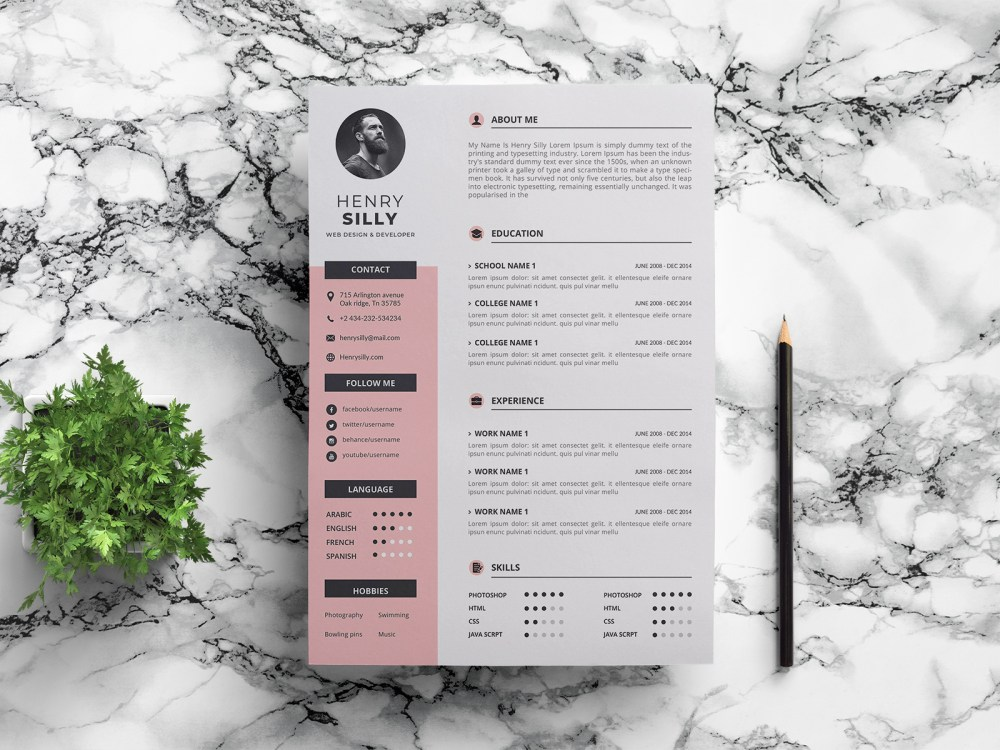 Free Modern Vector CV/Resume Template with for your Job Interview